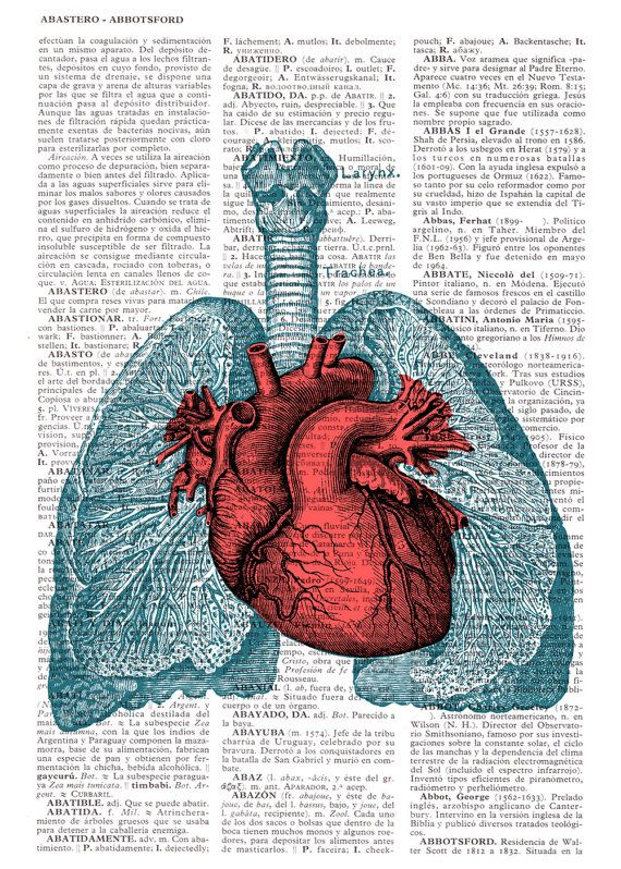 Heart And Lungs Anatomy Book Page Print On Vintage
