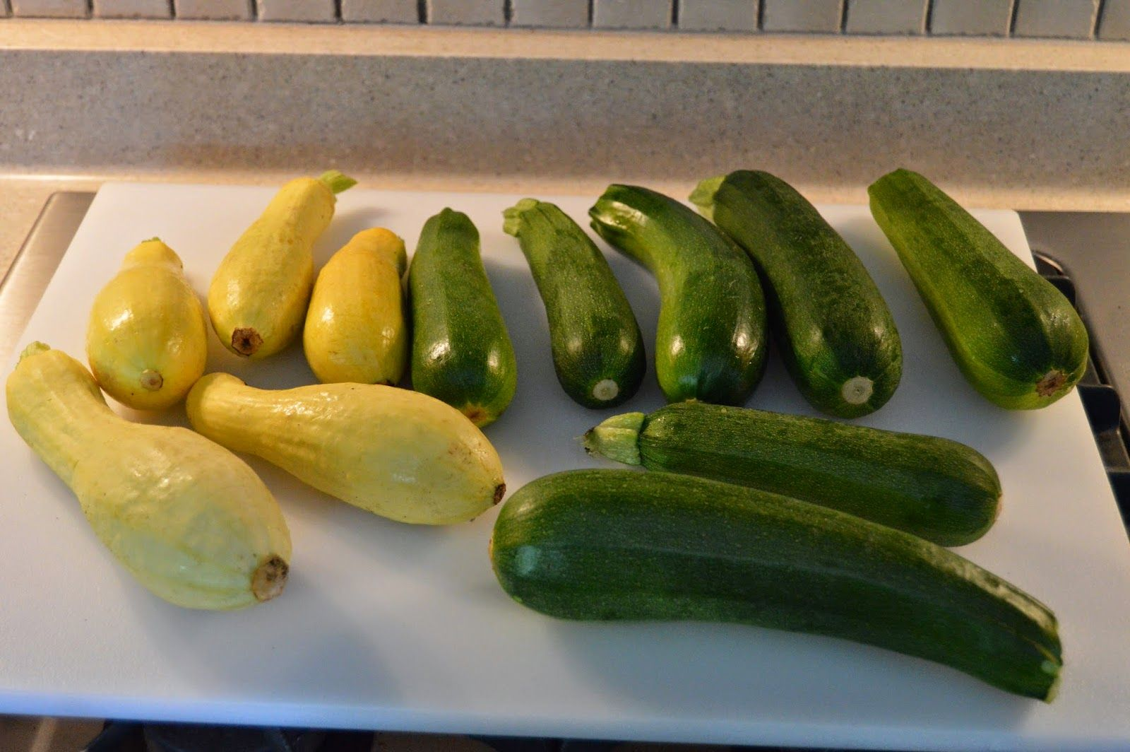 Veggies and Cheese and Eggs if you please. A great solution for preserving summer squash!