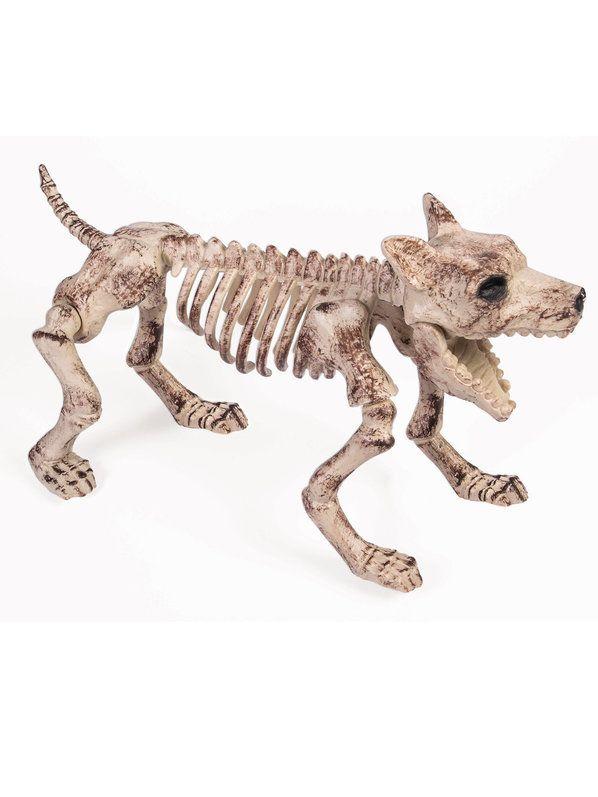 Check out Bone Skeleton Dog Prop - Skeletons  Skulls Decorations