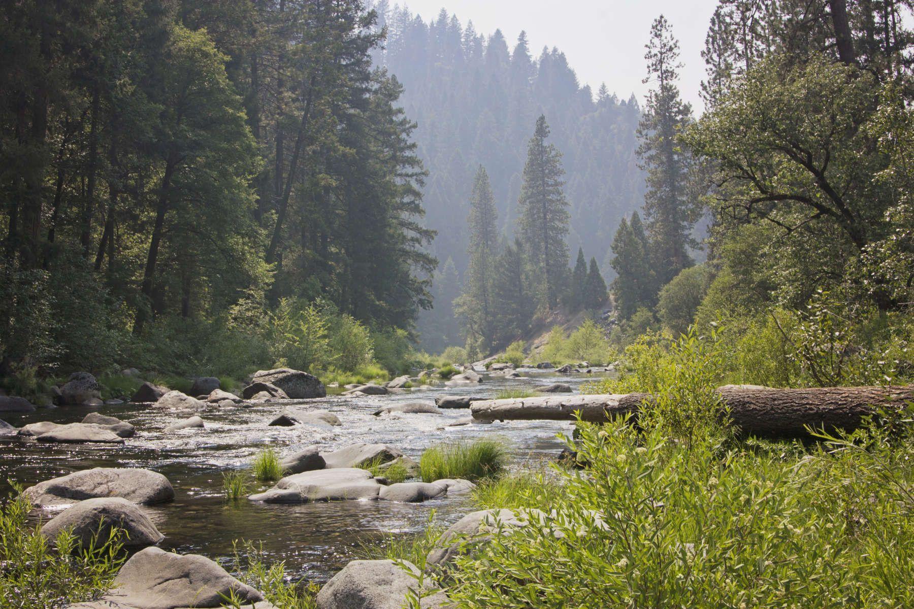 Tipi Camping in Silver Fork Ranch, California   Go ...