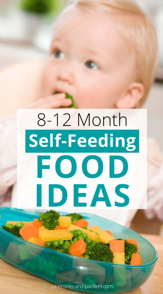 Self-Feeding ideas for 8-12 Month Olds - Pinecones ...