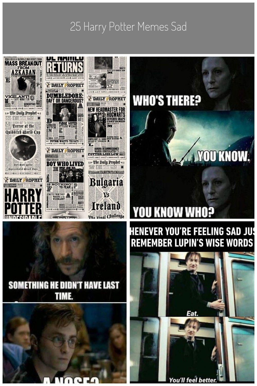 Harry Potter Memes Harry Potter Mina Lima Wallpaper Daily Prophet Voldemort Funny Memes Voldemort Birthday