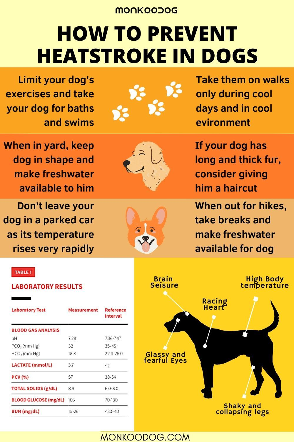 Pin On General Dog Care Tips Helpful Tips For Dogs