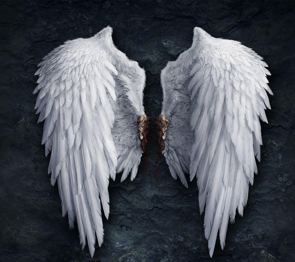 Love these in 2019 White angel wings, Wings wallpaper