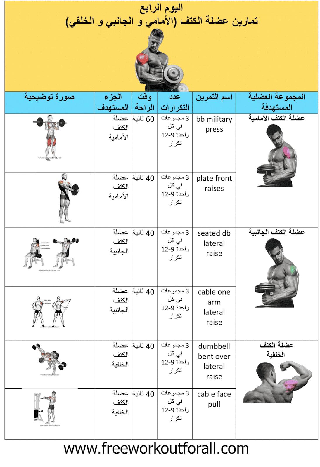 جدول تمارين كمال الاجسام 5 ايام Workout Schedule Gym Workout Chart Gym Schedule