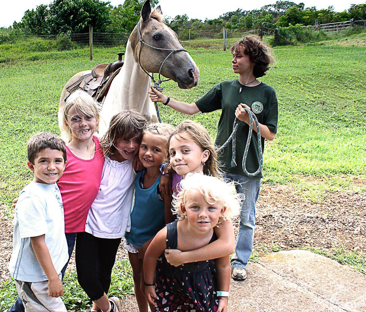 Free hawaii activities for kids hawaii activities