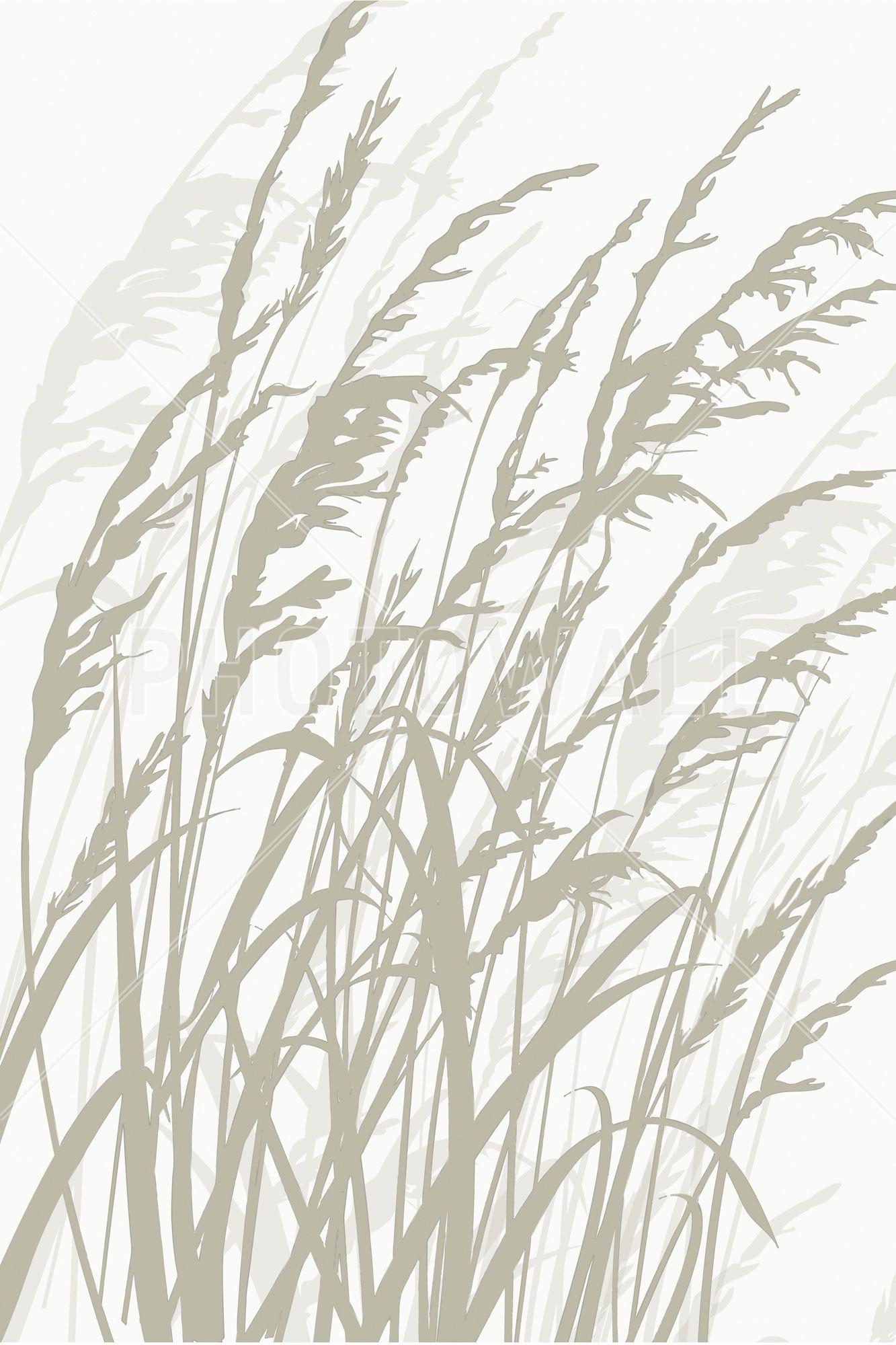 Grass White Fototapeter & Tapeter Photowall