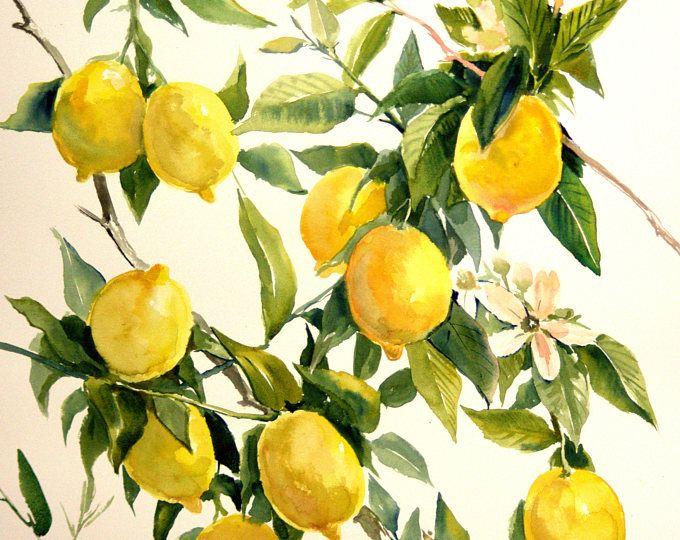 Lemons Tree Oriingal Watercolor Painting 12 X 9 In Lemon Tree