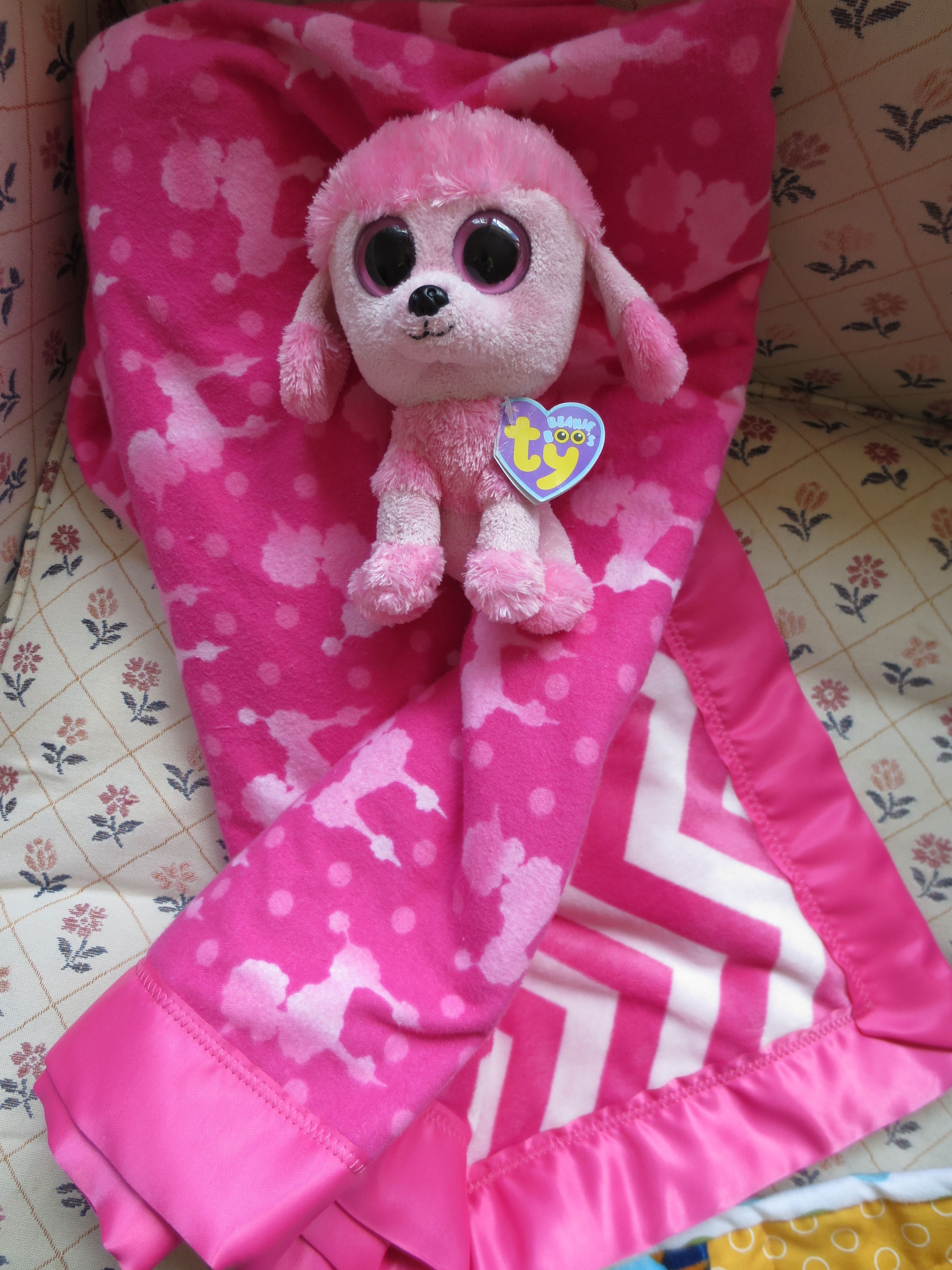 Poodle blanket with adorable poodle! plus fuzzy pink chevron on the back = Adorable!!