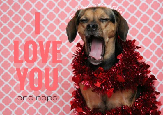 dog valentines day cards