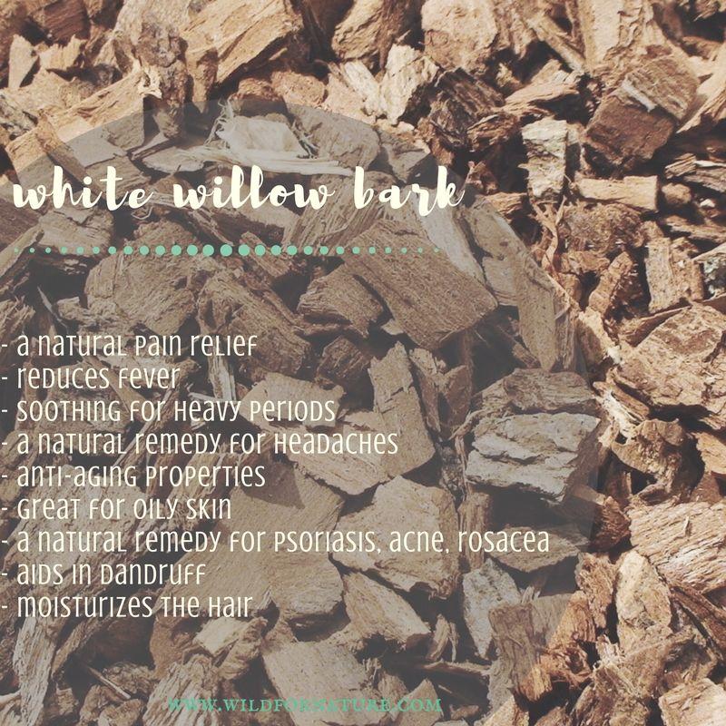 willow de la varicoz