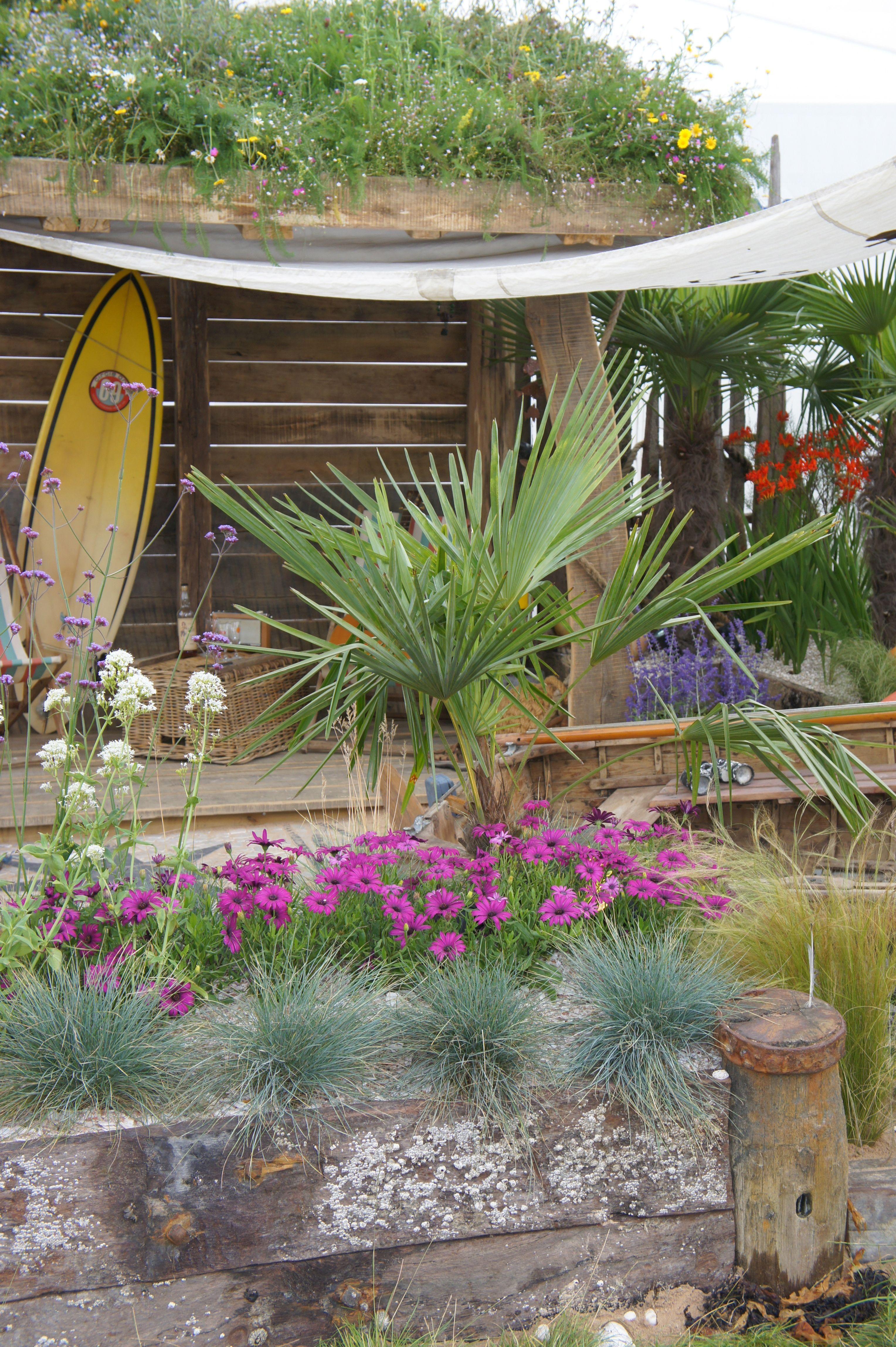 Seaside Garden For Severndale Specialist School
