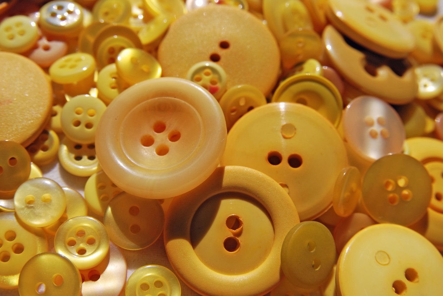 Color Mostaza - Mustard Yellow!!! Buttons