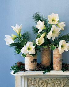 Photo of Holiday Flower Arrangement