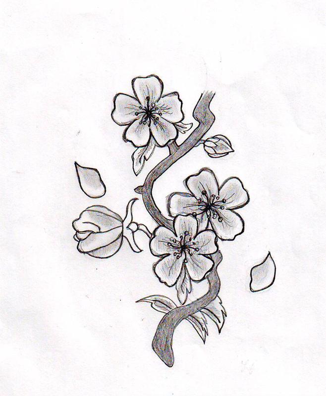 Cherry Blossom Tattoo Drawings Flower By HelloKitten20 On DeviantART Tat