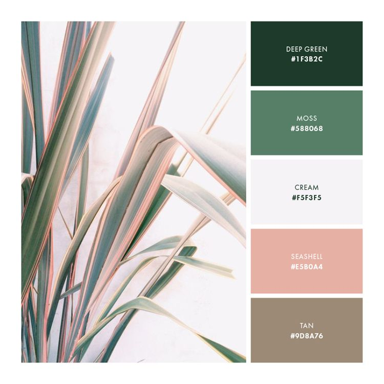 Color Palette Pink Green Brown Soft Neutral Color Palette Pink Green Colour Palette Green Color Schemes