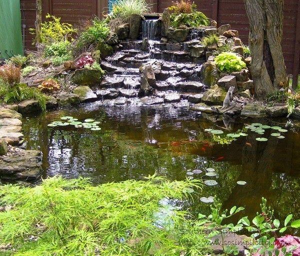 Estanque varias cascadas piedras plantas amplio for Cascadas de piedra para jardin