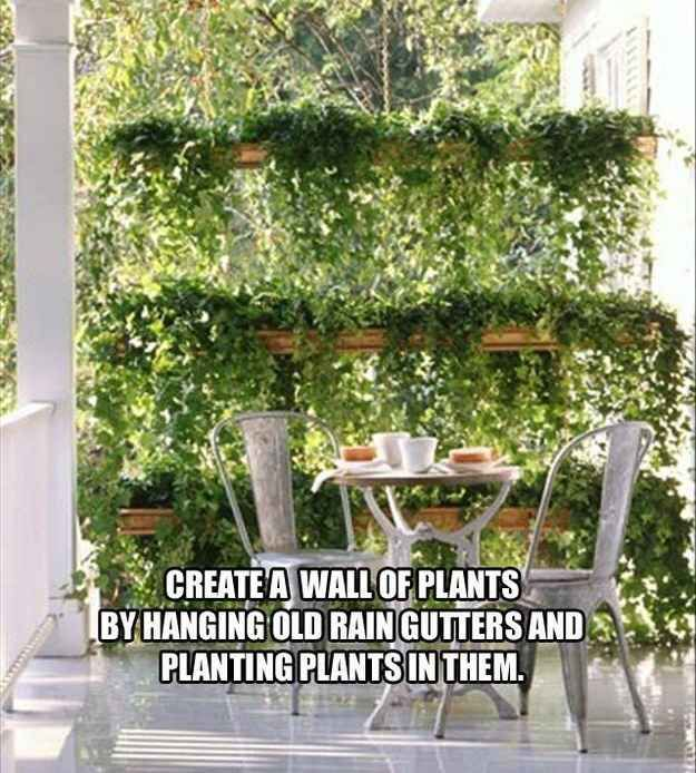 Create a little privacy with a plant wall made from old rain gutters. - 51 Budget Backyard DIYs That Are Borderline Genius