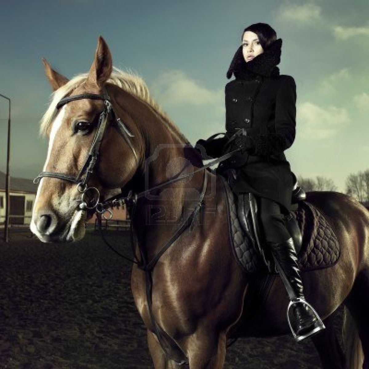 Tall Riding Boots Equine Photography Equestrian Chic Equestrian Fashion Woman Riding Horse