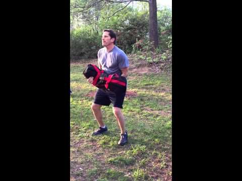 Sandbag5 - Ann Prokenpek, To The Core Personal Training