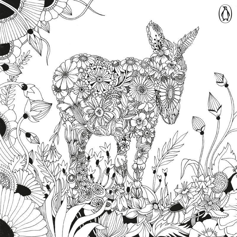 9780141371214_EscapeToShakespeare_TXT.indd | animal coloring | Pinterest