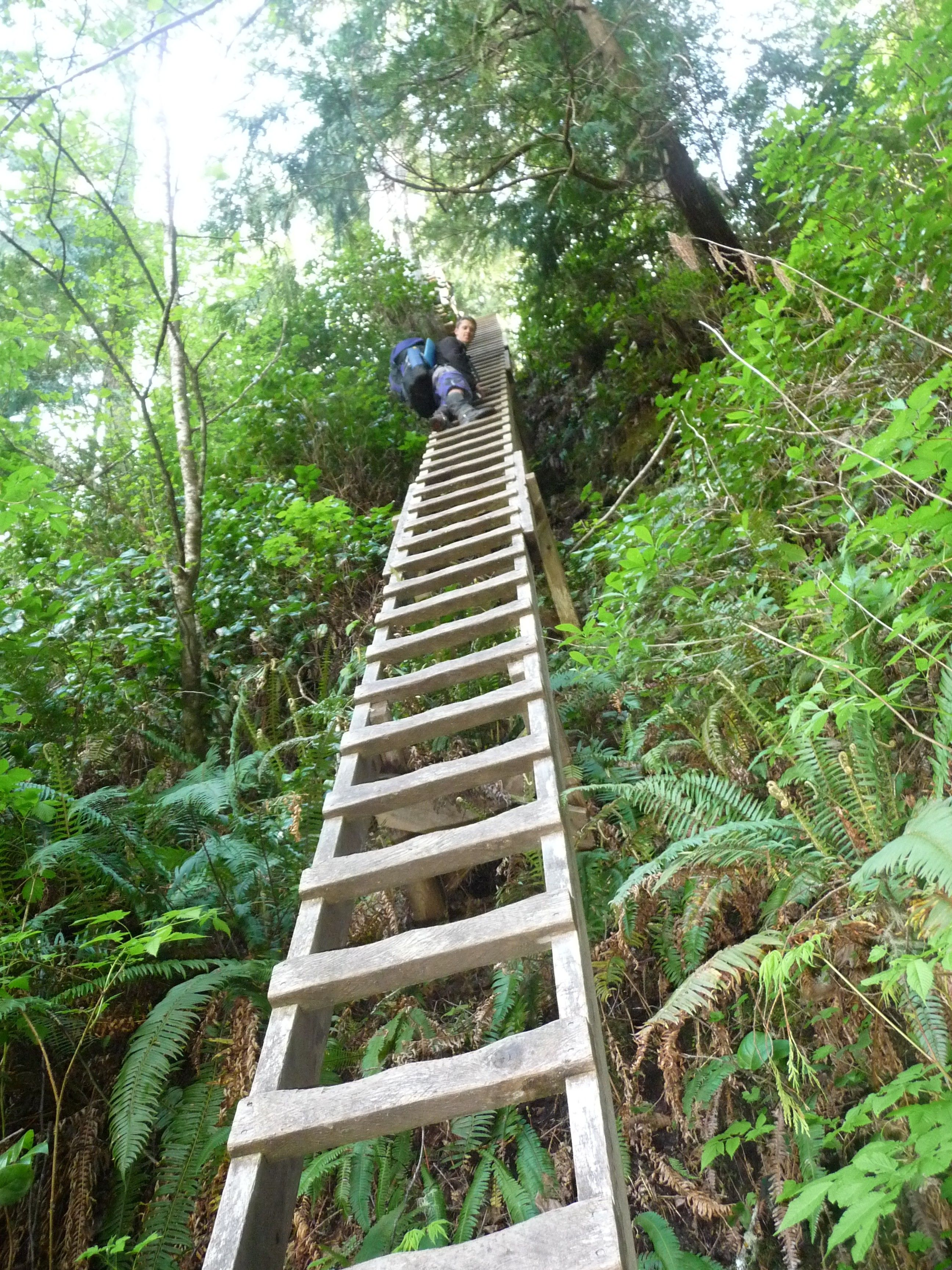 how to get on the west coast trail