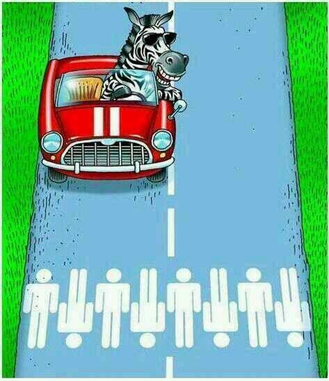 Zebra crossing in a Zebra's World :P