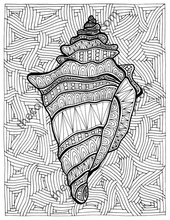 Zentangle Shell Adult Coloring Page Sheet Colouring Book