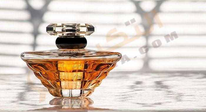 تفسير حلم رؤية العطر في المنام بالتفصيل وفقا لما ورد في ك تب التفسير هل يدل حلم العطر على الخير أم ا Discount Perfume Perfume Online Discount Perfume Online