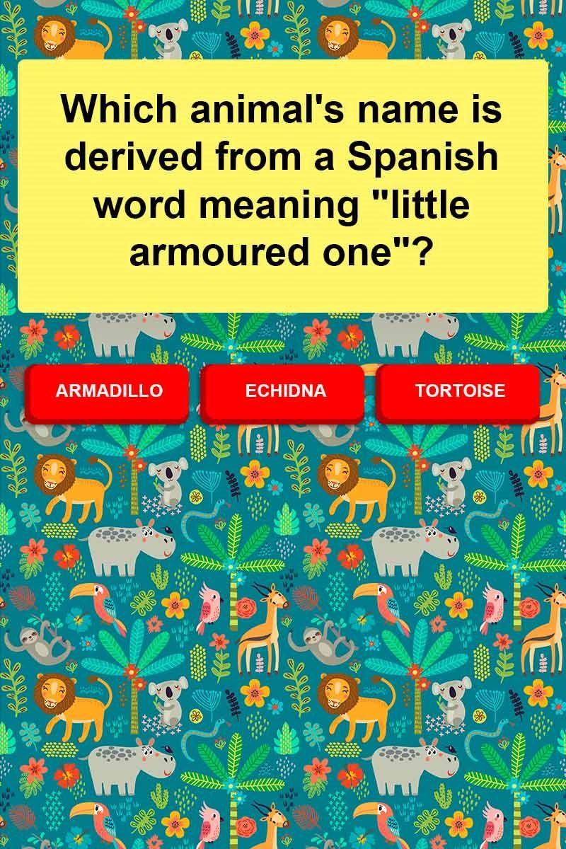 Which animal's name is derived from a Spanish word meaning