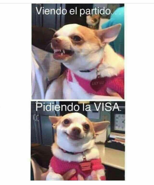 Pin De Rosa Cordero En Memes Memes Fotos Costa