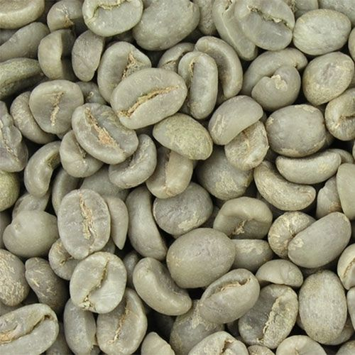 Green Coffee Bean Extract - Professional Nutrition Consulting