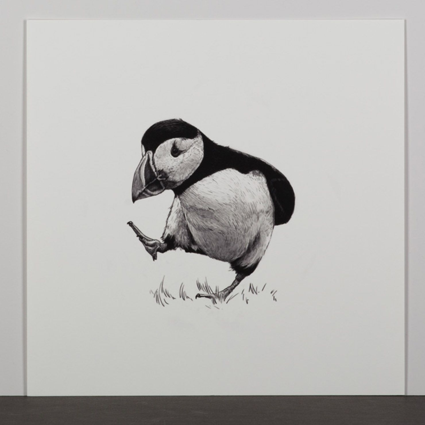 Ben Rothery - Unpopular Opinion Puffin, Limited Edition ...