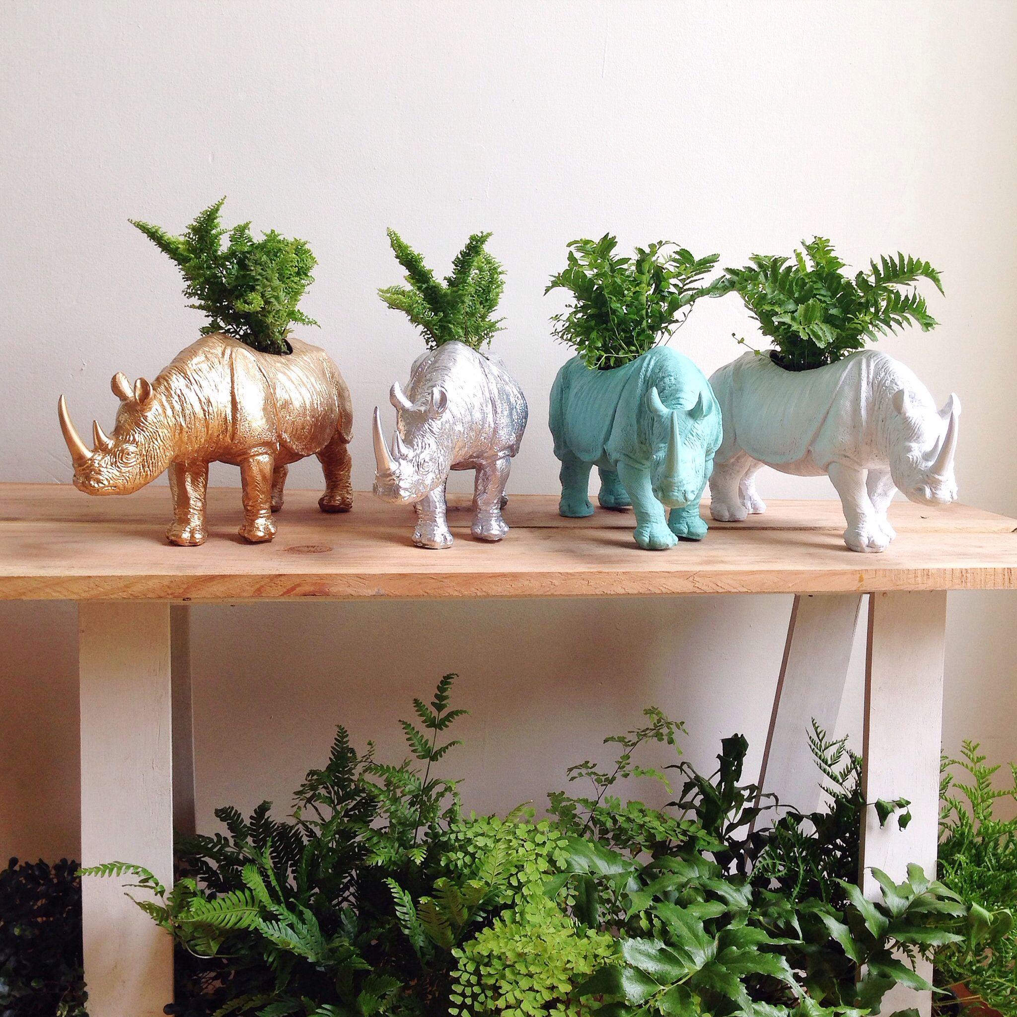 macetas - rinoceronte de AmorVegetal en CAÑAMIEL