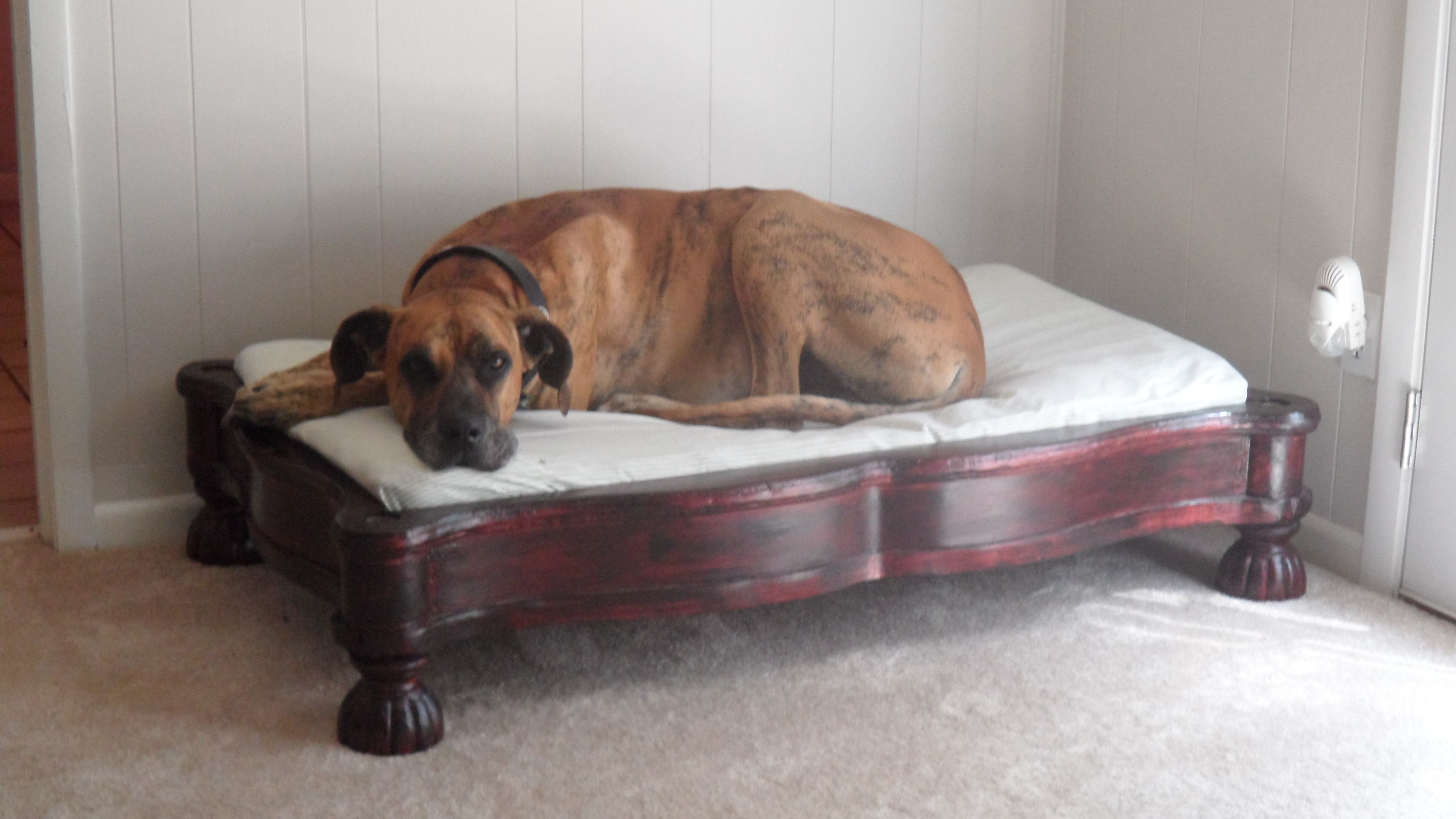 Old coffee table turned upside down with a crib mattress mine old coffee table turned upside down with a crib mattress big for big dog geotapseo Image collections