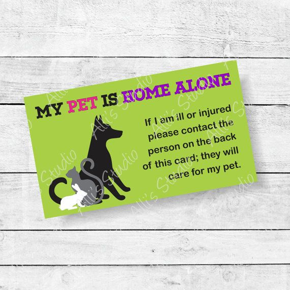 Dog Home Alone Pet Emergency Contact Card 2 Sided 2x3 5 Inch Card Dont Leave Home Without It Make Sure Your Pets Pet Emergency Card Pet Emergency Home Alone