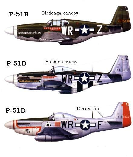 What is the P-51 Mustang fighter plane?