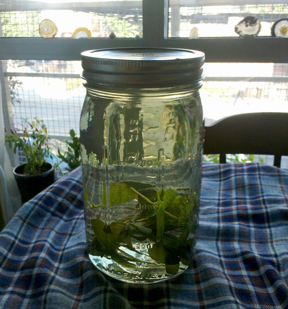 Herbal Infusions — little seed farm Herbal infusion