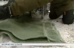 Nouvelles - Sortir sa voiture de la glace en un tournemain - MétéoMédia