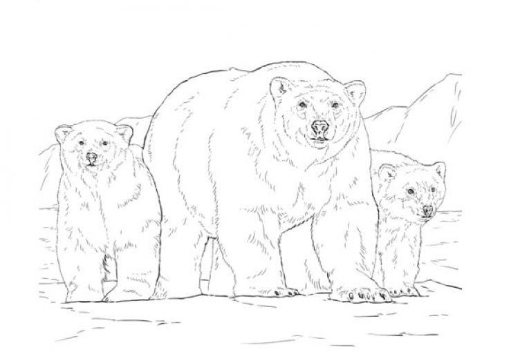 Pin On Kids Coloring Page
