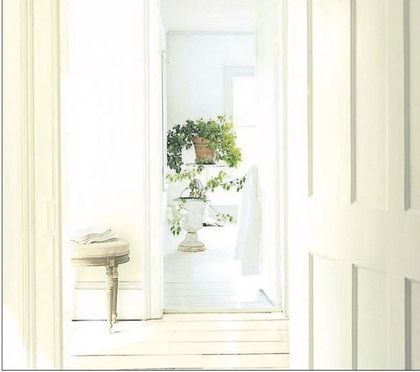 White on white is the new luxury real estate trend. Find out why homeowners are loving it!