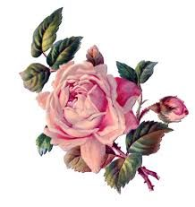 Картинки по запросу картинки для распечатки розы