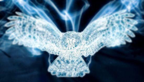 10 Patronus Ideas Patronus Harry Potter Patronus Wolf Pictures