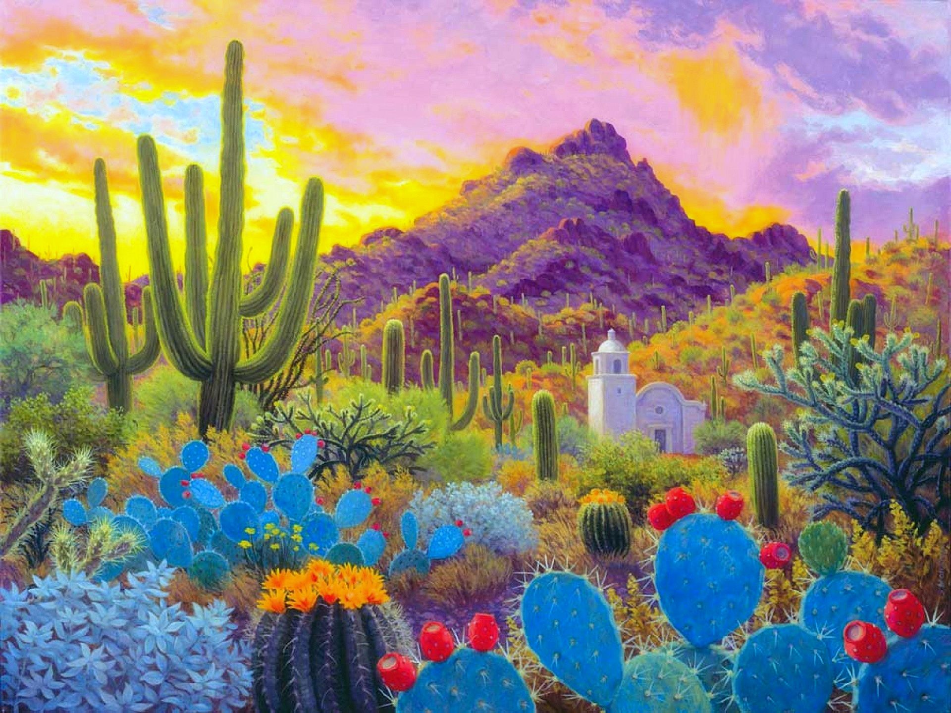 Cactus Garden Wallpaper Cactus in the evening desktop