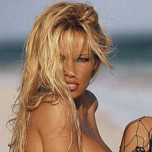 Pin on Pam Anderson