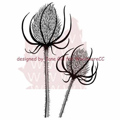 Woodware - Teasels