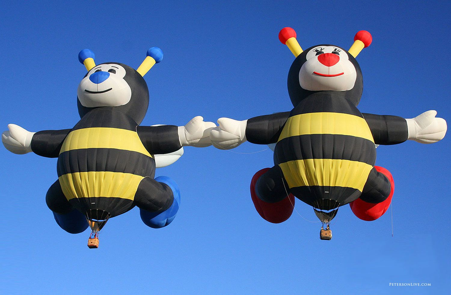 I love the twin bees! Albuquerque balloon fiesta