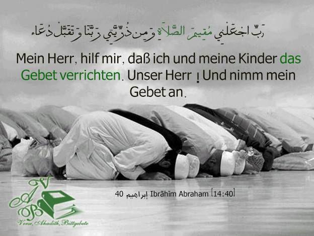 Pin von Dalia Ahmed auf Holy Quran القرآن الكريم (mit ...