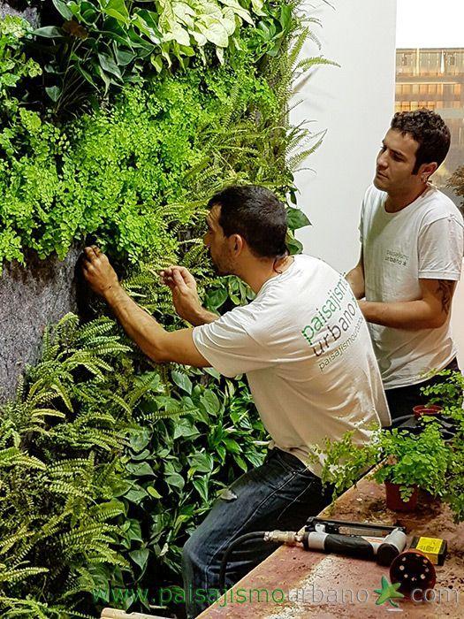 Verde que te quero verde- ideias lindas para você