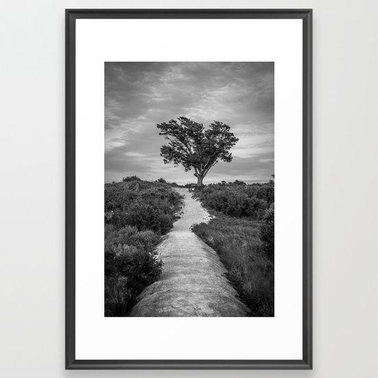 Windswept tree at fort fisher nc black and white coastal landscape framed art print